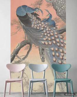 2 peacocks on a tree branch - Wallcovers