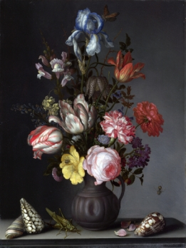 Vase with Flowers, shells and insects  - Wallcover