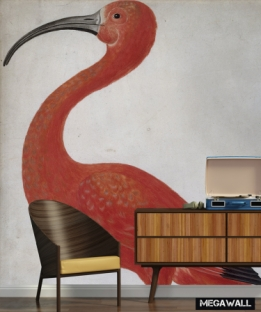 Surinaamse Flamingo - Wallcovers